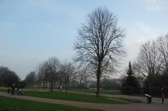 Em Londres, meu albergue ficava pertíssimo do Kensignton Gardens e era uma delícia ir andando até lá!