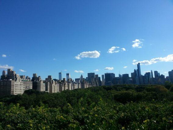 vista_rooftop_met